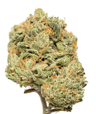 CITRON | UPLIFITING SATIVA